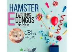 Hamster (tubarão SC)