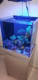 Aquario a venda sem animais