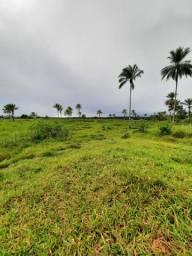 Vendo excelente fazenda Jaguaripe