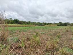 49 hectares com estrutura completa