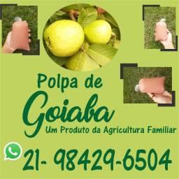 Polpa de goiaba um produto agricultura familiar