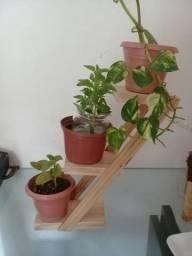 Título do anúncio: Suporte para cactos, suculentas (plantas pequeno porte)