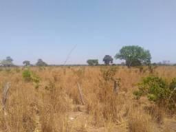 Fazenda em Paraíso