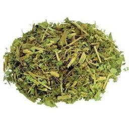 Chá Orgânico de Assa Peixe para evitar bronquite, asma e pneumonia