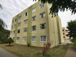 Apartamento à venda com 3 dormitórios em Colonia dona luiza, Ponta grossa cod:3489