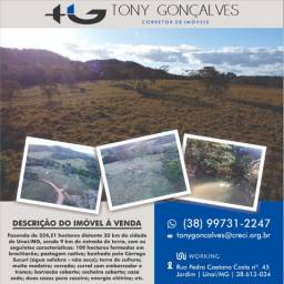 Fazenda de 254,21 hectares distante 32 km de Unaí/MG