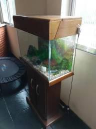 Vendo este aquário