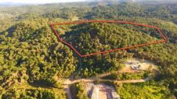 Área com 60 mil m² em São José dos Pinhais