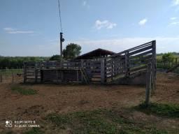Fazenda 70 hectares