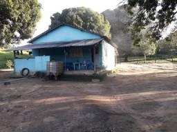 Fazenda, 225 Alqueires, São Valério - TO