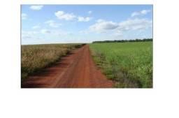 3250 Hectares, 2400 hec. lavoura, cede mais 4100 hec. arrendamento, Região de Norte-MT