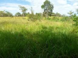 Terreno, fazenda pra alugar/arrendar sete lagoas MG
