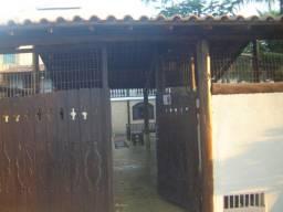 Telhados e bancos