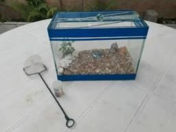 Vendo aquário pequeno com acessórios