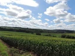 Área Rural de 15,2 alq. c/ acesso à Rodovia Pr 467 saída p/ Porto Mendes