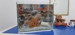 Vendo aquario 40x20x30 novo