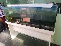 Vendo aquário, excelente estado de conservação