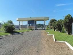 Pavilhão para alugar, 12000 m² por R$ 168.000/mês - Bom Sucesso - Gravataí/RS