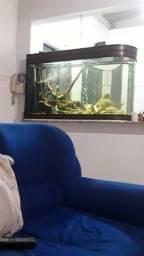 Vendo aquário curvo boyu 352 l