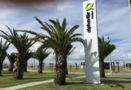 Terreno à venda, 600 m² por R$ 280.000,00 - Laranjal - Pelotas/RS