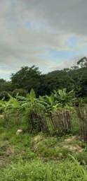Vendo terreno em pacatuba