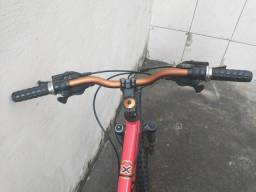 Bicicleta Vikings Customizada
