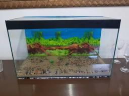 Aquario 60x35x27 52 litro