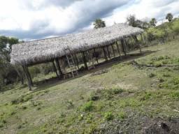 2 hectares de terreno