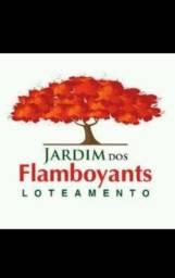Jardins dos Flamboyants ao lado do Solange parque