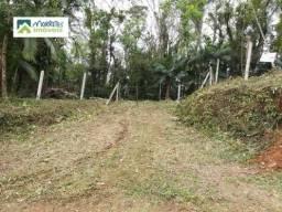 Terreno à venda no bairro São João da Graciosa - Morretes/PR