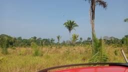 Arrendo sítio para plantio de soja