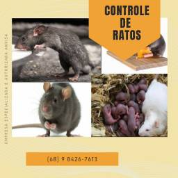 Controle de ratos