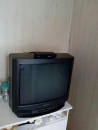 Tv 20 polegadas com controle com conversor digital !