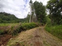 Ultimas unidades - chácara com 1 hectare em Padilha, interior de Taquara-RS