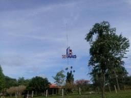 Fazenda à venda, R$ 3.320.000 - Novo Horizonte - Espigão D'Oeste/RO
