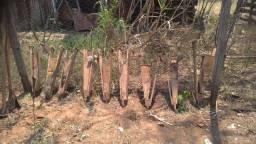 Plantadeira Adubadeira Antiga Tipo Matraca