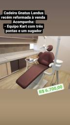 Cadeira gnatus