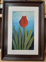Tulipa Vermelha.