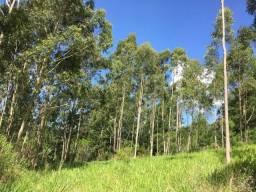 Chácara 2 hectares em Gravataí Barbada