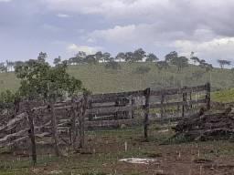 6 alqueire em cocalzinho de Goiás formado. Corrego.cachoreiras.casa.curral.energia