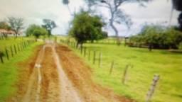 Fazenda de 87.945 hectares no Pantanal Mato-Grossense em Poconé