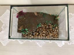 Aquário aquaterrario para tartaruga Médio