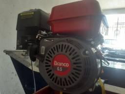 Motor Branco 6.5hp