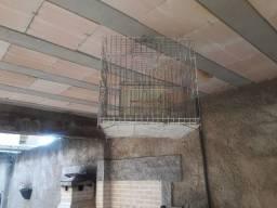 Vende-se 1 viveiro e 2 gaiola