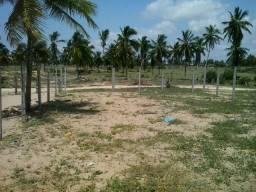 Vendo terreno em Pirambu