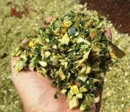 Silagem de milho Ensacado 30kg a 35kg