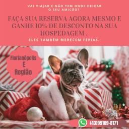 ATENÇÃO FLORIANÓPOLIS E REGIÃO !!