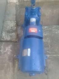 Bomba de Água para Irrigação 4cv