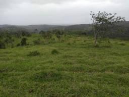 FAZENDA  em tapiramuta