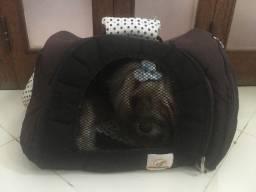Transporte para cachorro/gato